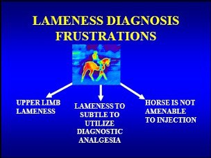 thermography and lameness diagnosis