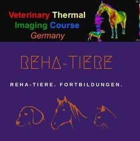 Thermography Course Germany